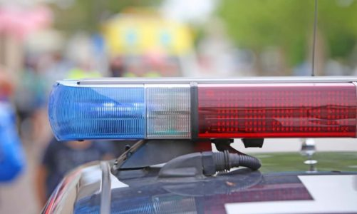 Oregon CBD company latest to allege wrongful border seizure
